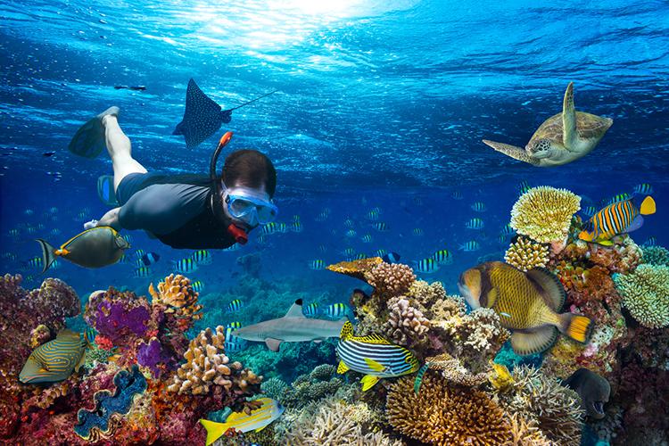 Belize Caribbean Water