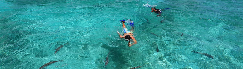 Cayo Espanto Snorkeling